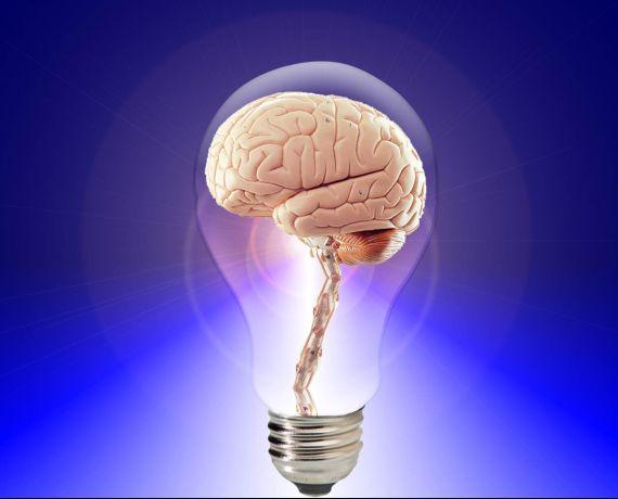 Inteligencia creativa, innovar tu marca o negocio