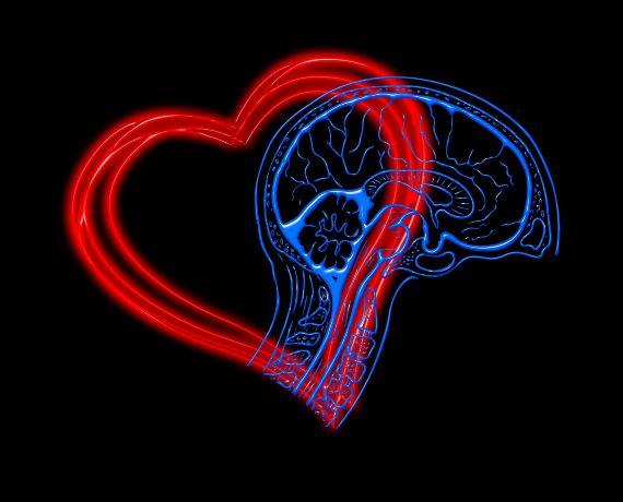 Inteligencia emocional - Conecta con los demás
